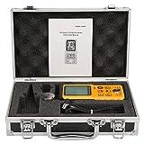 Ultraschall Dickenmessgerät, SMART SENSOR AR860 LCD Display Digitales Lackschichtdickenmessgerät Tester Messsonde Messbereich 1,0-300,0 mm Schichtdickenmessgerät (Stahl)